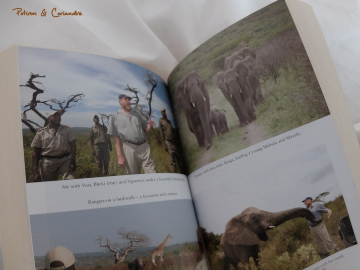 Livre_Lhomme_qui_murmurait_elephants3
