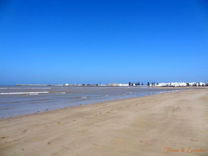 Essaouira (16)