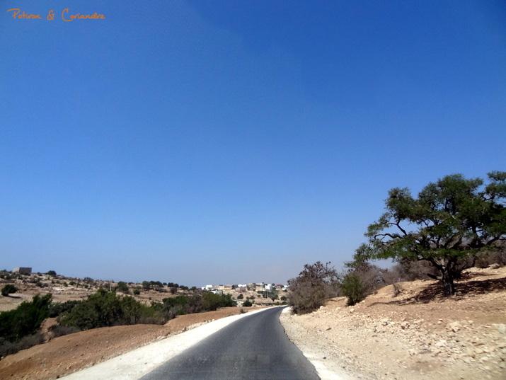 Essaouira (18)