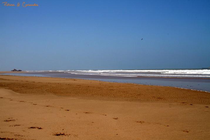 Essaouira (20)