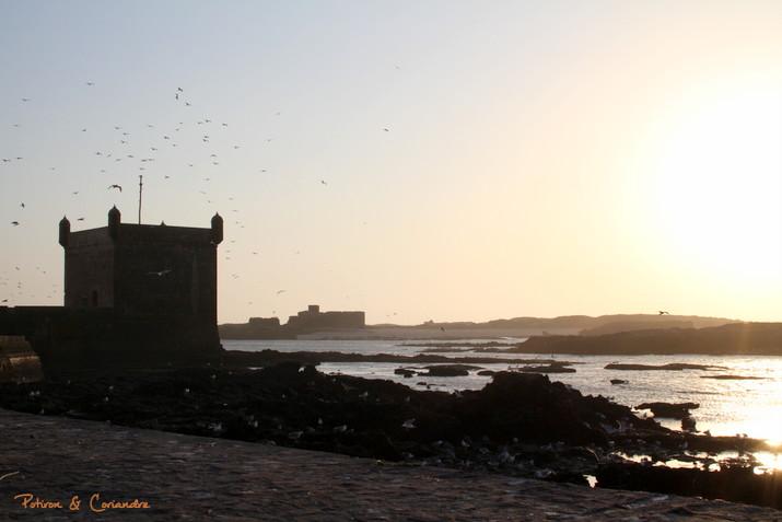 Essaouira (23)