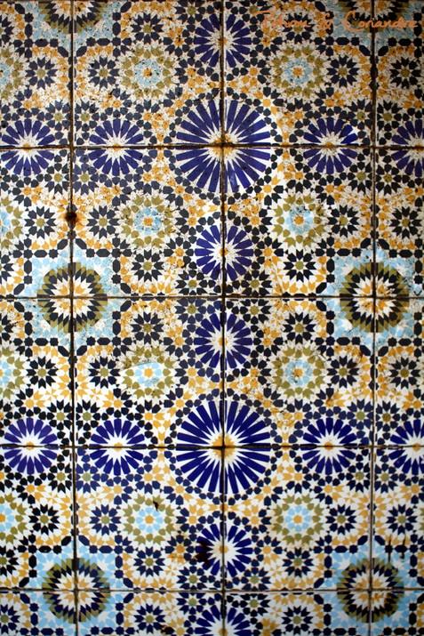 Essaouira (25)