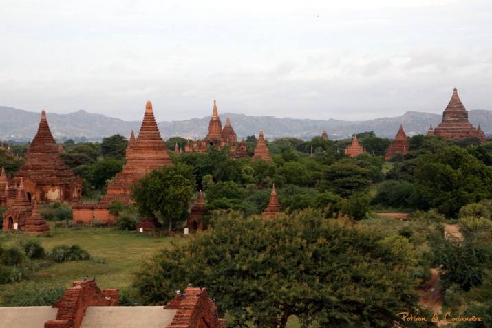 Bagan (15)