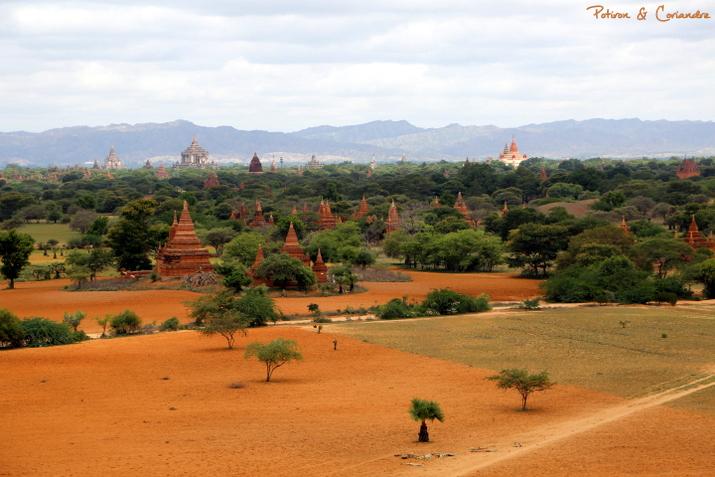 Bagan (19)