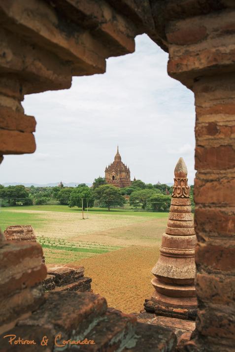Bagan (2)