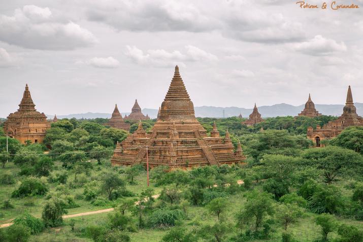 Bagan (6)