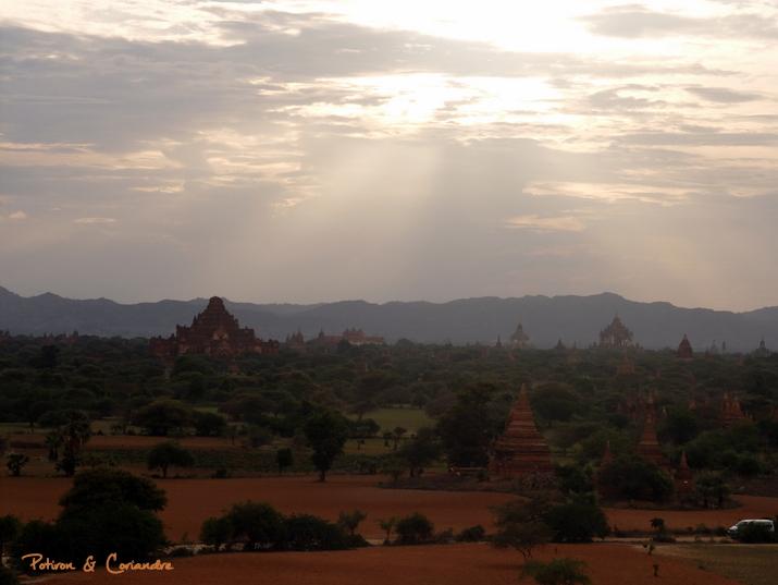 Bagan29