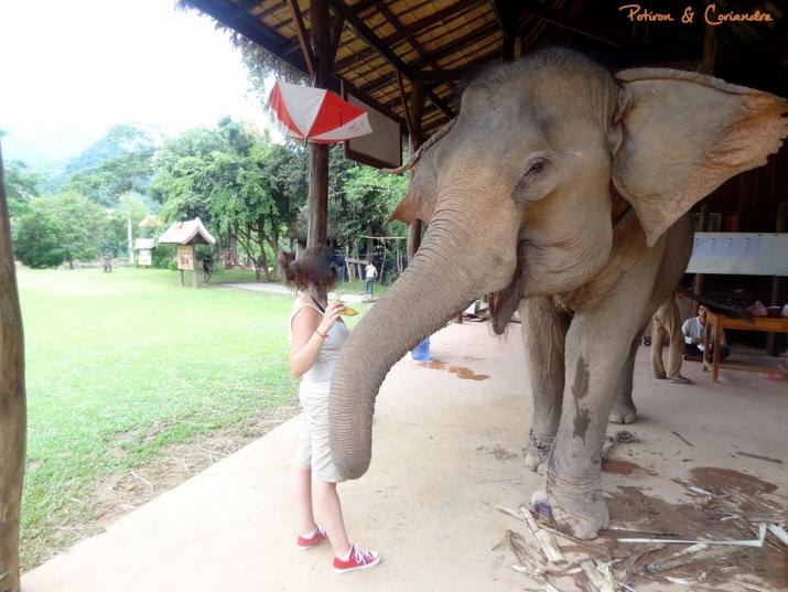 Luang (2)