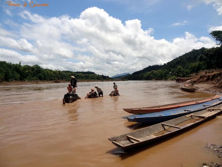 Luang (3)