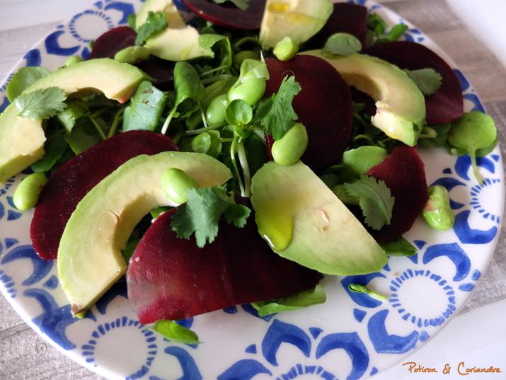 Salade Avocat Betterave (3)