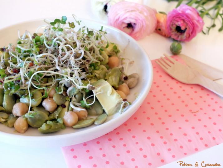 Salade_feve_avocat_poischiche (3)