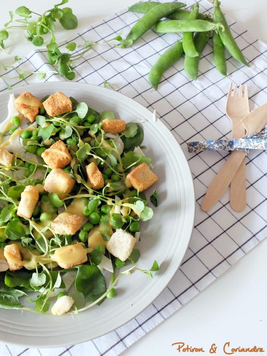 Salade_Printemps (2)