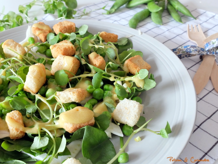 Salade_Printemps (3)