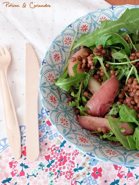 Salade_pdt_lentilles (2)