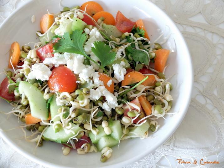 Salade_Keralaise (2)