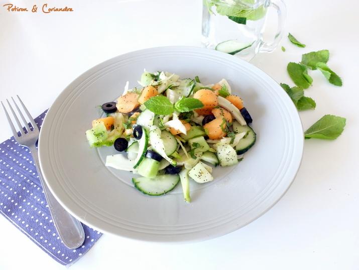 Salade concombre fenouil melon (2)
