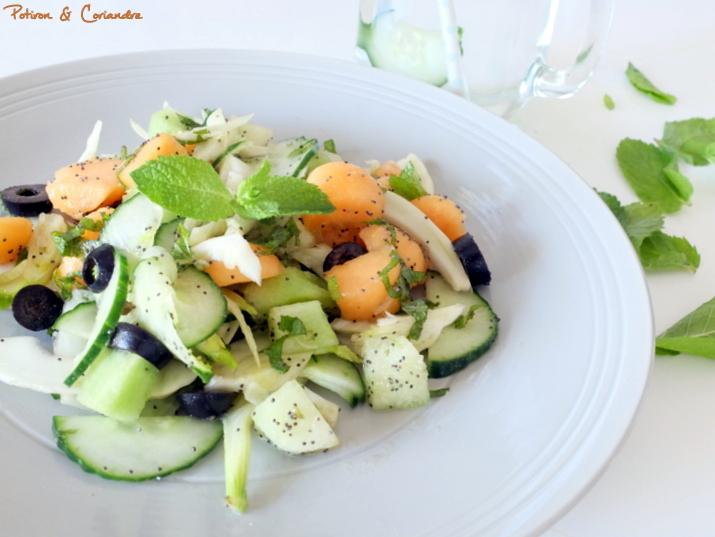 Salade concombre fenouil melon (3)